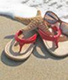 Rehoboth Beach-Dewey Beach C of Com